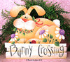 Bunny crossing - Reneè Mullins