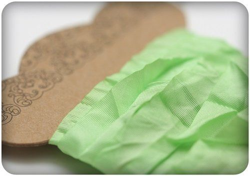 Nastro ScrapBerry's Shabby Ribbon - Fresh Green