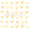 Carta 30x30 Alexandra Renke - Butterfly international
