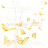 Carta 30x30 Alexandra Renke - Butterfly swarm international