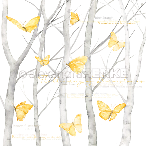 Carta 30x30 Alexandra Renke - Butterfly in birch forrest international